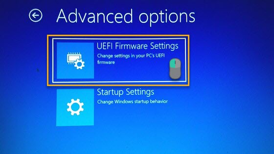 UEFI firmware settings in Boot Options Menu